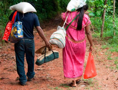 ¿Quiénes se benefician de la red de protección social panameña? Implicaciones para la era del COVID-19
